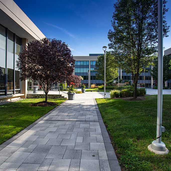 Purchase Professional Park Exterior